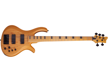 Schecter Riot-5 Session