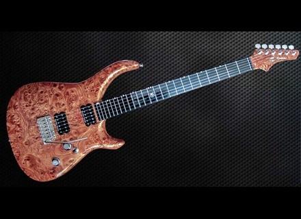 Siger Guitars R-Butt