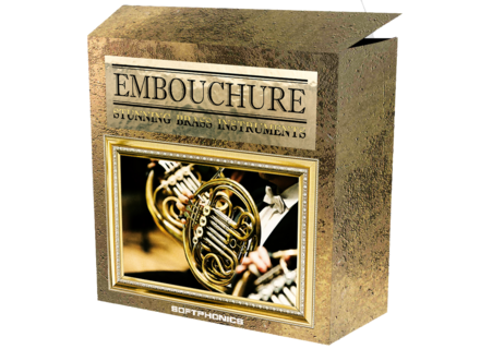 Softphonics Embouchure