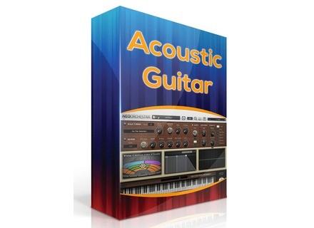 Sound Magic Acoustic Guitar