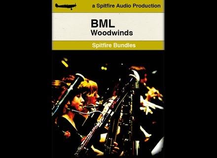 Spitfire Audio The Woodwinds Bundle