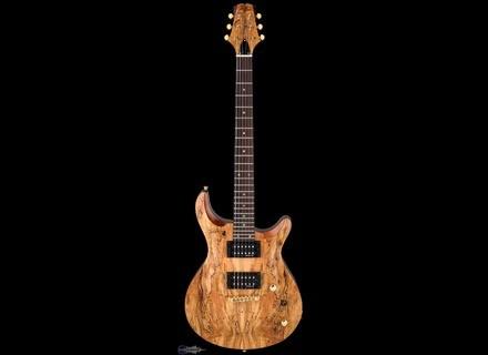 Swing Guitar Technology Jeff Watson Signature