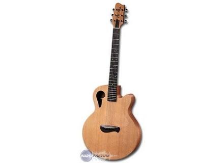 Tacoma Guitars Chief