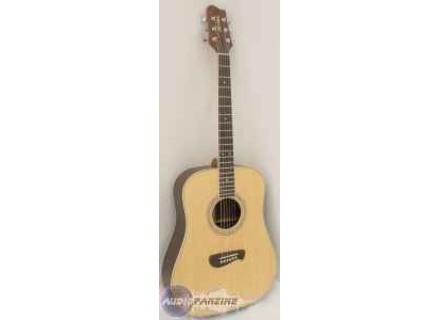 Tacoma Guitars DR14