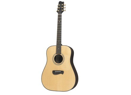 Tacoma Guitars DR28