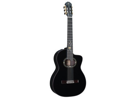 Takamine LTD2012C Michi