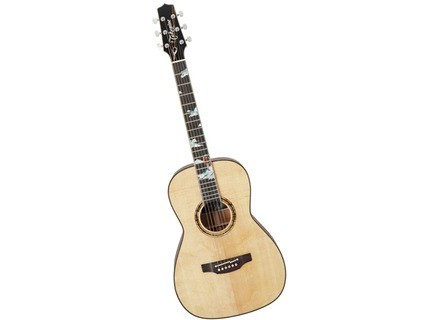 Takamine LTD2013 SE Peak