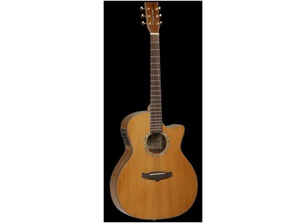 Tanglewood Evolution Exotic