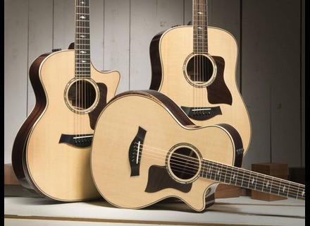 Taylor 800 Deluxe