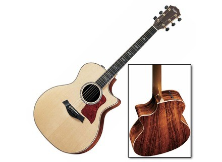 Taylor 814ce-L10 Fall limited Edition