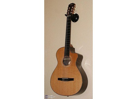 Taylor NS72CE