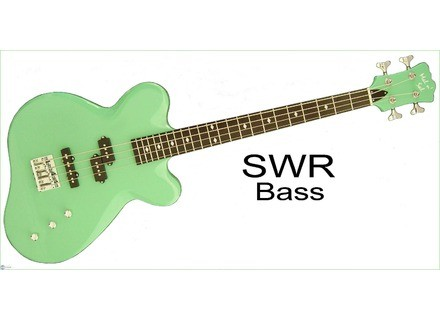 The Alternative Guitar And Amplifier Company SWR