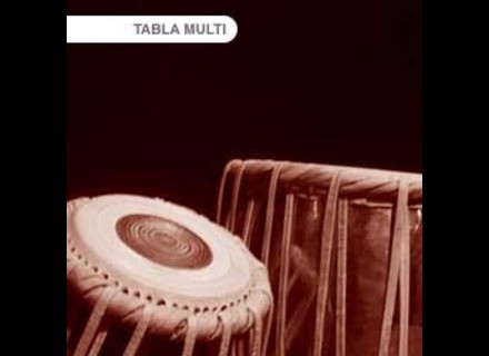 Tonehammer Tablas Vol. 2: Multi-Samples