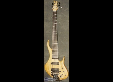 Tung Guitar Wing Serie