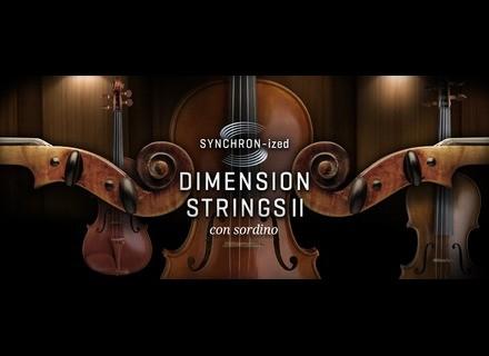 VSL (Vienna Symphonic Library) Synchron-ized Dimension Strings II