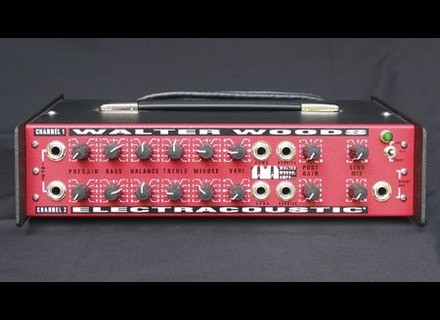 Walter Woods electracoustic