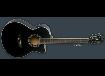 Washburn EA12