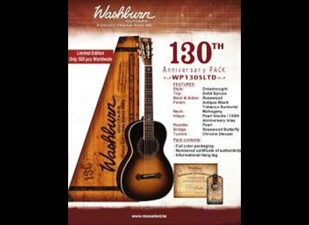 Washburn WP130S