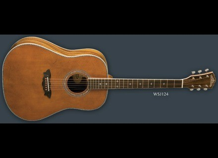 Washburn WSJ124K