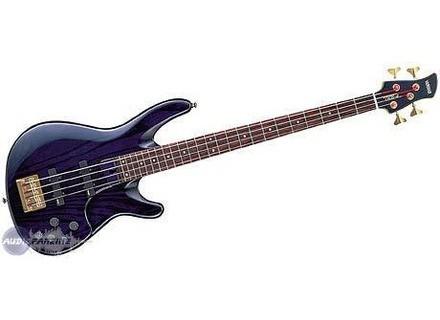 Yamaha TRB4II