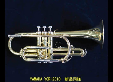 Yamaha YCR