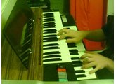 Elka Panther Duo 2200 organ demo