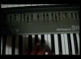 Analog Synths (Live - Impro)