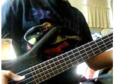 Take The Power Back Bass Cover