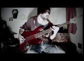 Nirvana - Heart Shaped Box (Bass Cover)