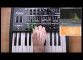 [4/5] Arturia MiniBrute TUTORIEL : Sections Controls & Vibrato / Brute Factor