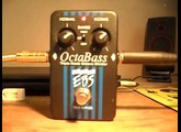 EBS OCTABASS - FRETTED BASS TEST
