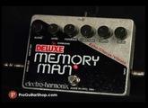 Electro Harmonix Deluxe Memory Man XO