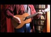 "Furch ""Little Jane"" Travel Guitar"