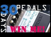 Boss TE-2 Tera Echo Bitesize Review - 30 Days, 30 Pedals - WIN!