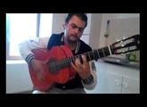 Test de ma nouvelle guitare flamenca alhambra 4f vertaizon,gipsy king,flamenco