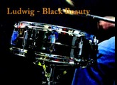 "Ludwig Black Beauty 14x5"" snare"