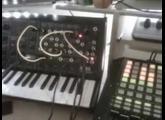 vidéo MS 20 mini + kenton usb solo 2