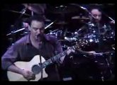 Dave Matthews Band -The Dreaming Tree