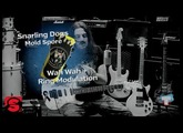Setup on Fire #14 - Snarling Dogs Mold Spore Wah