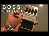 BOSS - Tera Echo TE-02