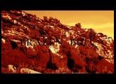 Brazen Bull - Original track