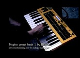 DSI Mopho Keys bank 1 demo with BOSS GT10 efx, all original sounds of this analogue synth by REWO