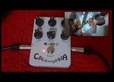 Review Joyo California Sound JF-15