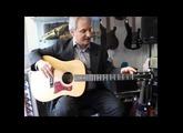 Guitar Review: Taylor 110