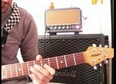"FX amplification - LaBleue -  Joe Satriani   "" Starry Night """