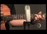 Luna Guitars Gypsy Spalt Acoustic Guitar Product Spotlight