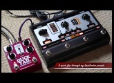 T-Rex : SPINDOCTOR2 with DUCK TAIL DELAY