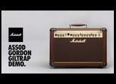 Gordon Giltrap demos the AS50D Marshall Amp