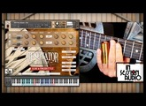 Resonator Guitar - In Session Audio