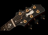 Inside PRS Acoustics - Tree of Life Limited Run